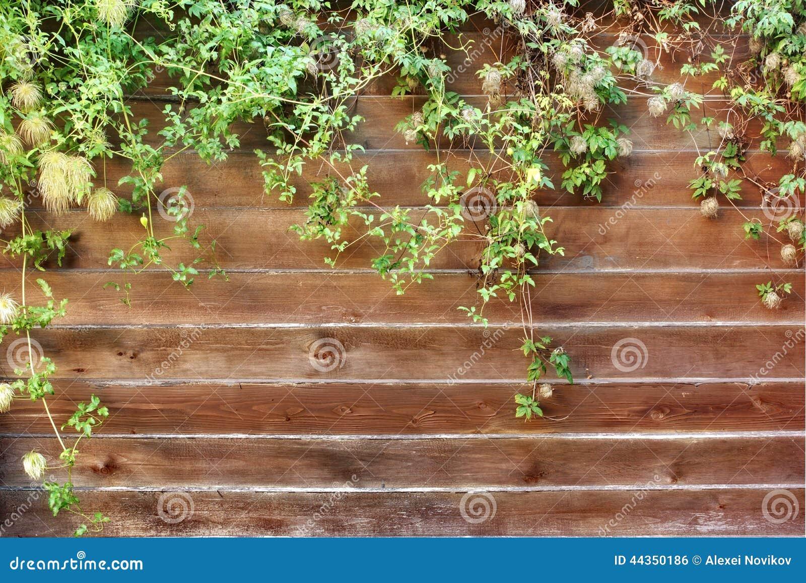 Esterno di legno della sezione del recinto