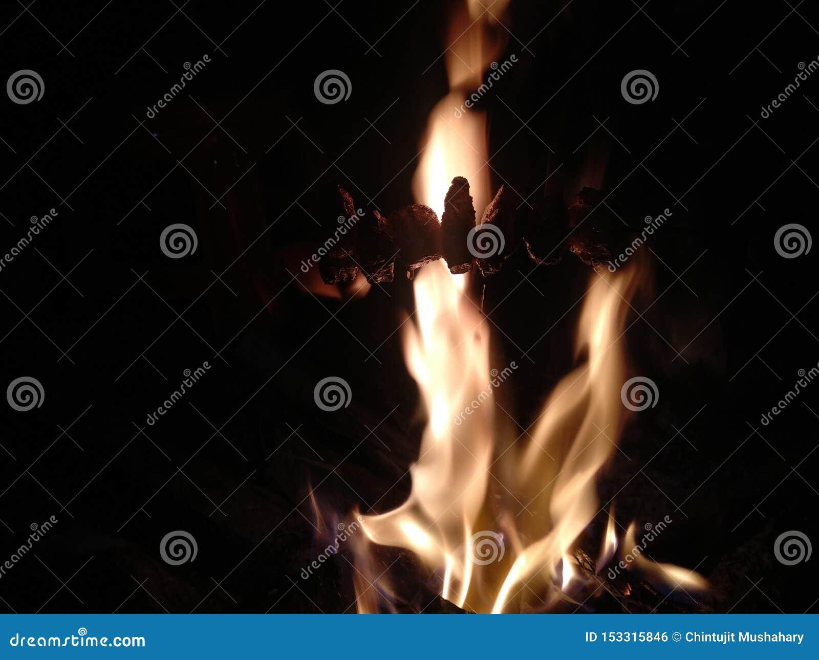Estilo indiano da carne de porco do fumo da vila do fundo do fogo