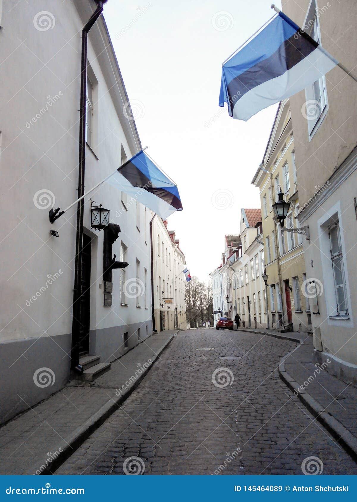 Estonia tallinn Estl?ndska flaggor ?r p? fasad av en byggnad Historyan gata