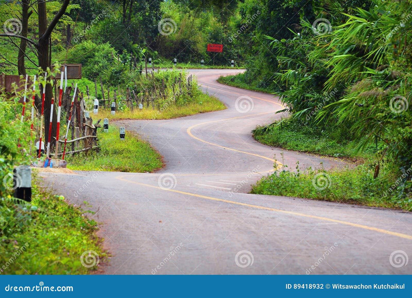 Estrada bonita de Zig Zag