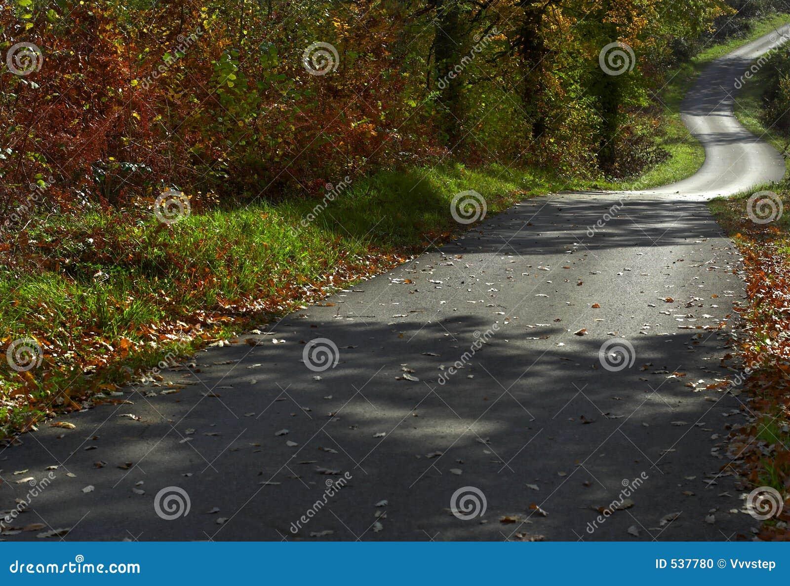 Estrada a cair 2