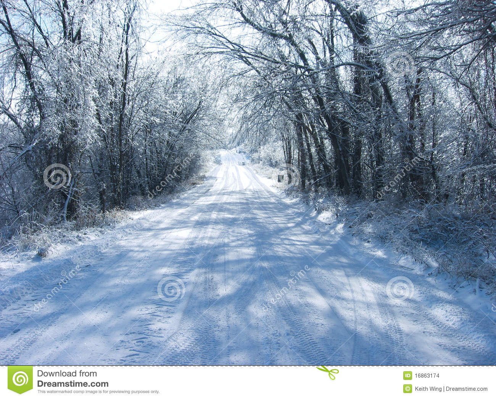 Estrada congelada