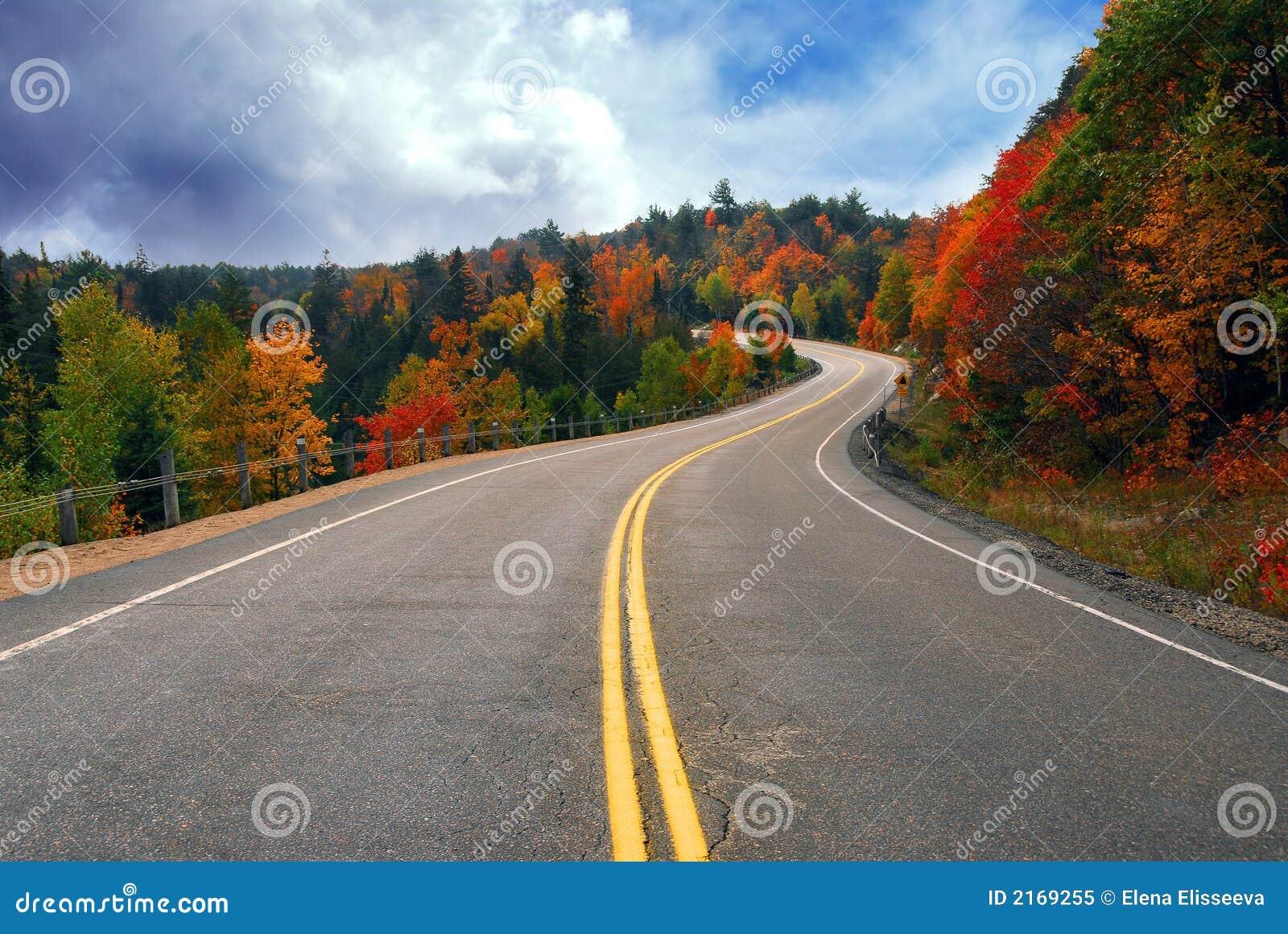 Estrada da queda