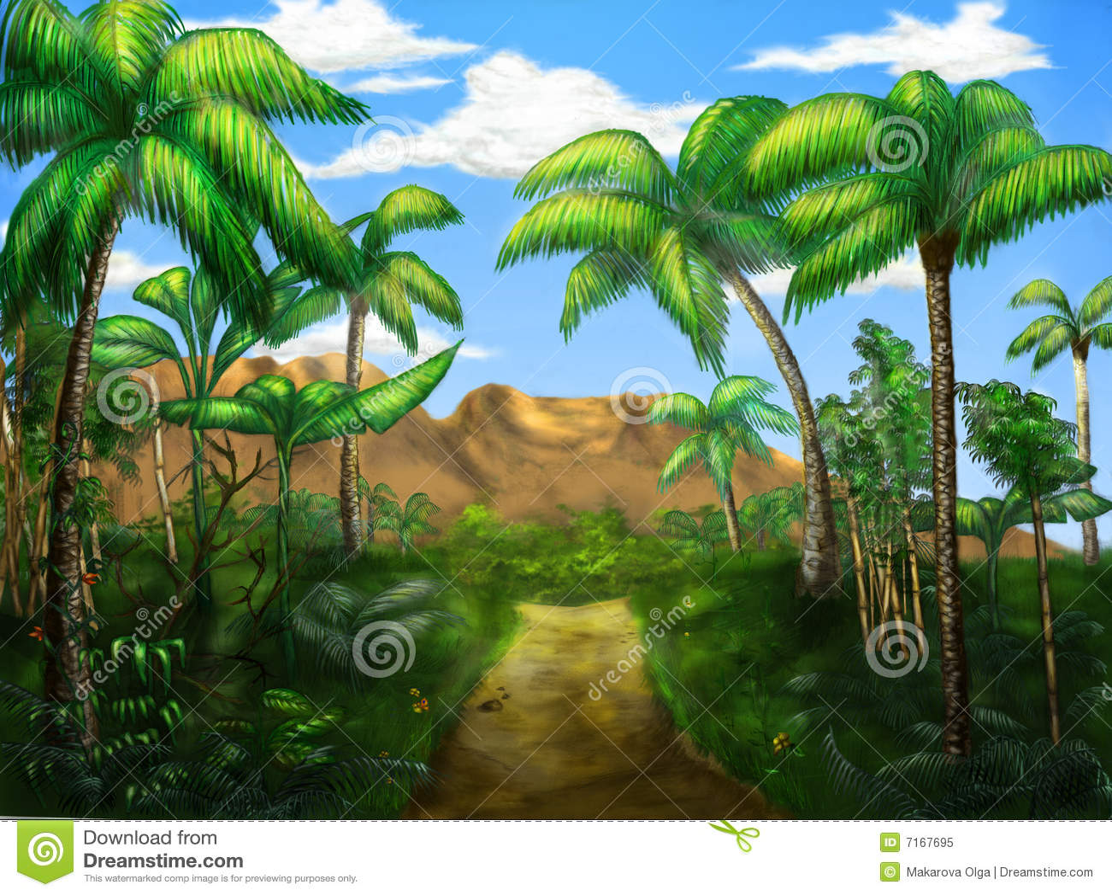 Estrada da selva