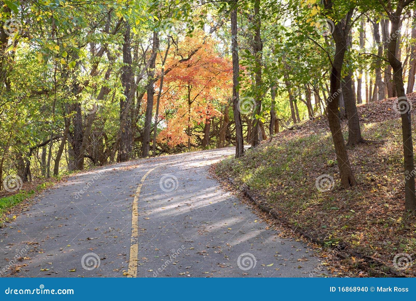Estrada de Cournty do outono