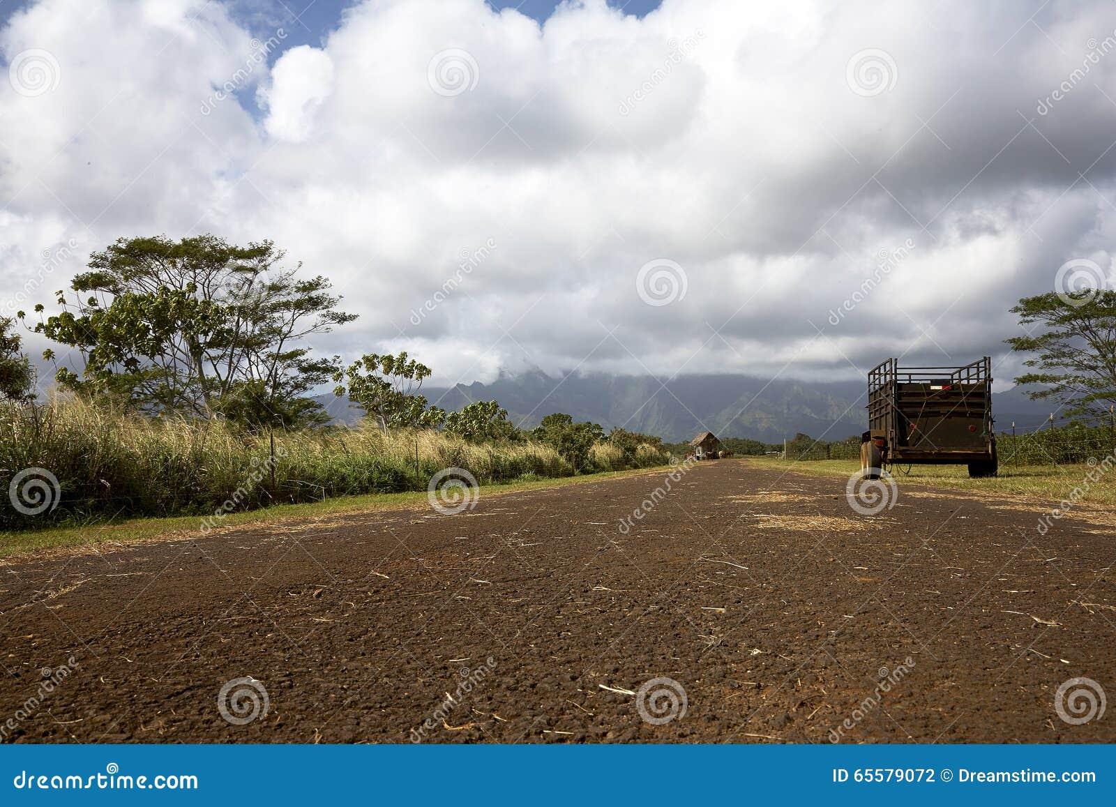 Estrada de exploração agrícola de Kauai, Havaí