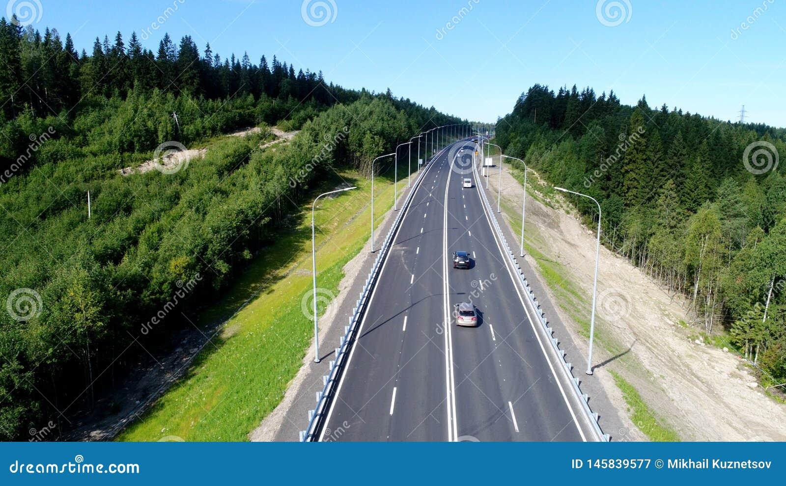 Estrada de floresta em um dia de ver?o no norte no ver?o
