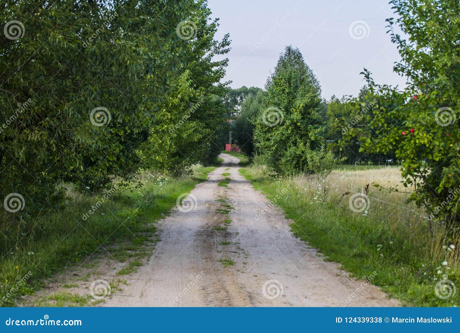 Estrada de Sandy que conduz à vila