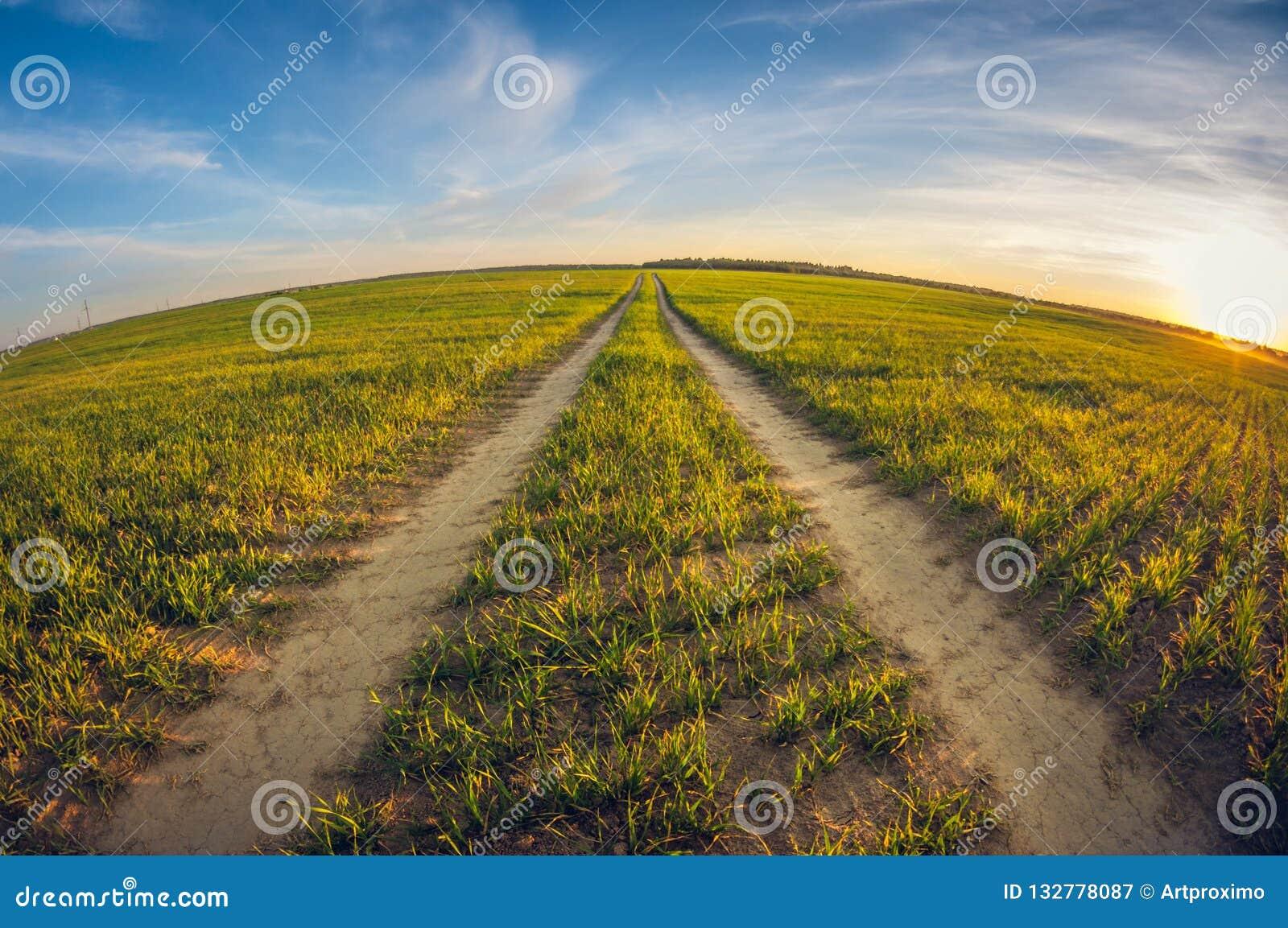 Estrada de terra da paisagem em um campo de sementeira na distorção do olho de peixes do por do sol