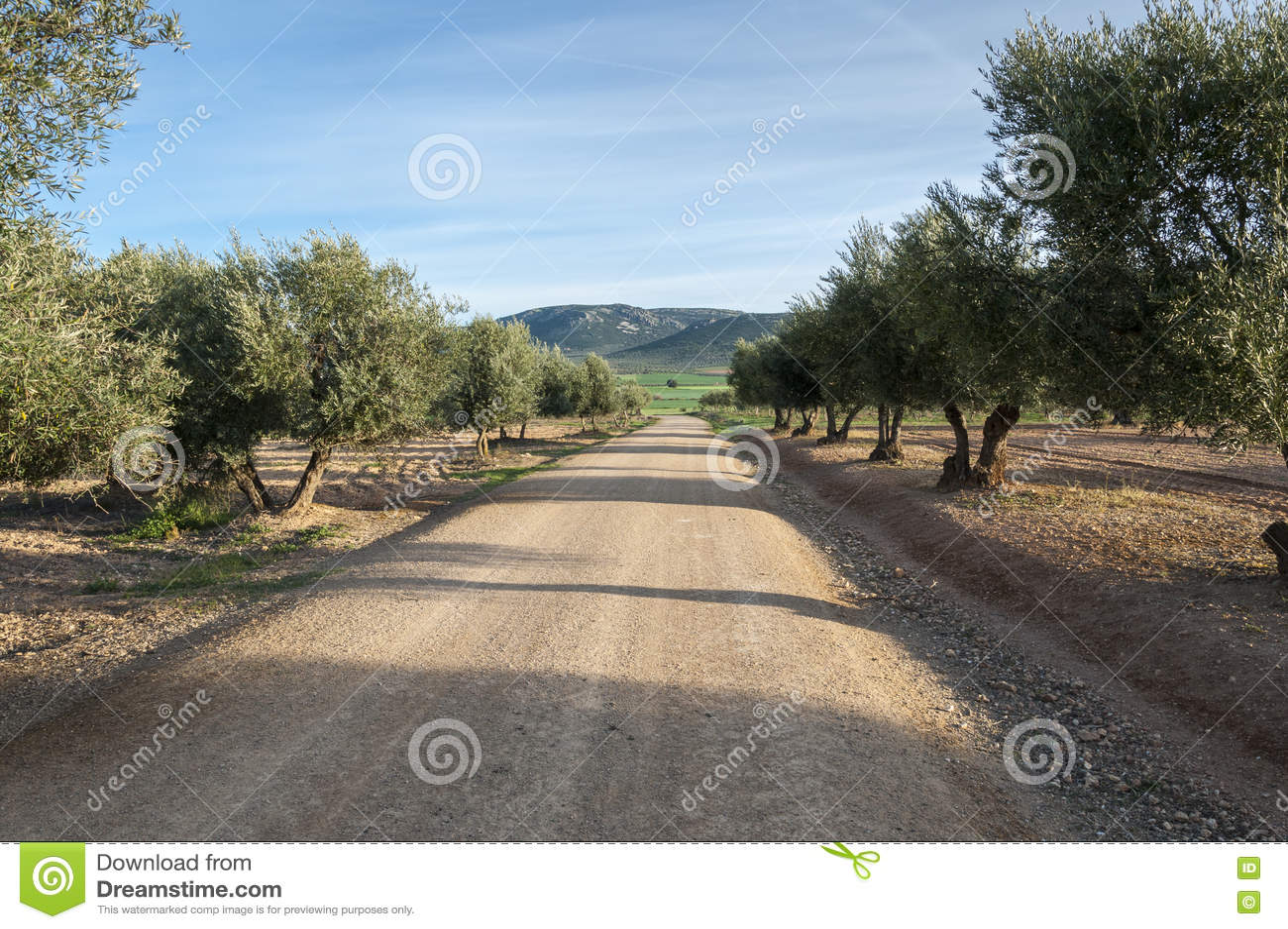 Casa Rural Terra