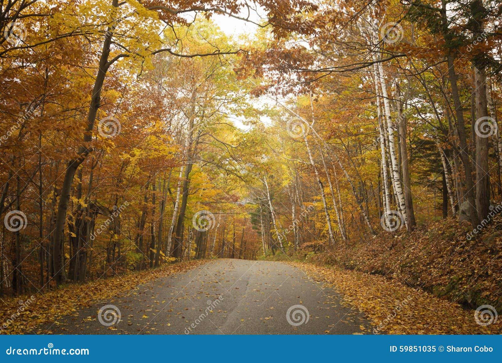 Estrada de Vermont no outono
