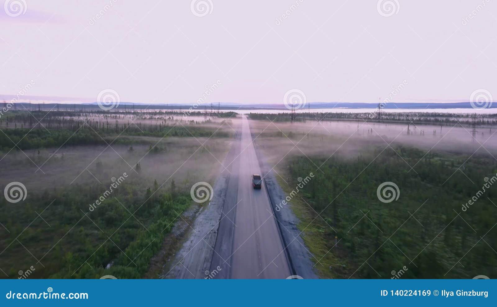 Estrada do norte do russo no verão nas florestas, tiro aéreo