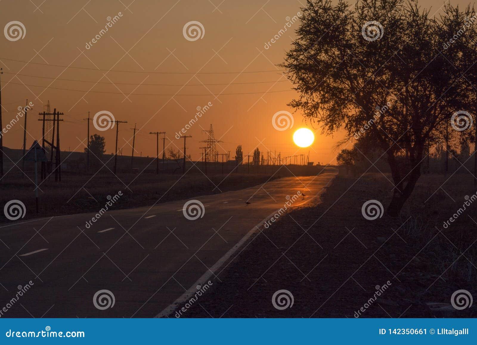 A estrada na névoa Por do sol O sol