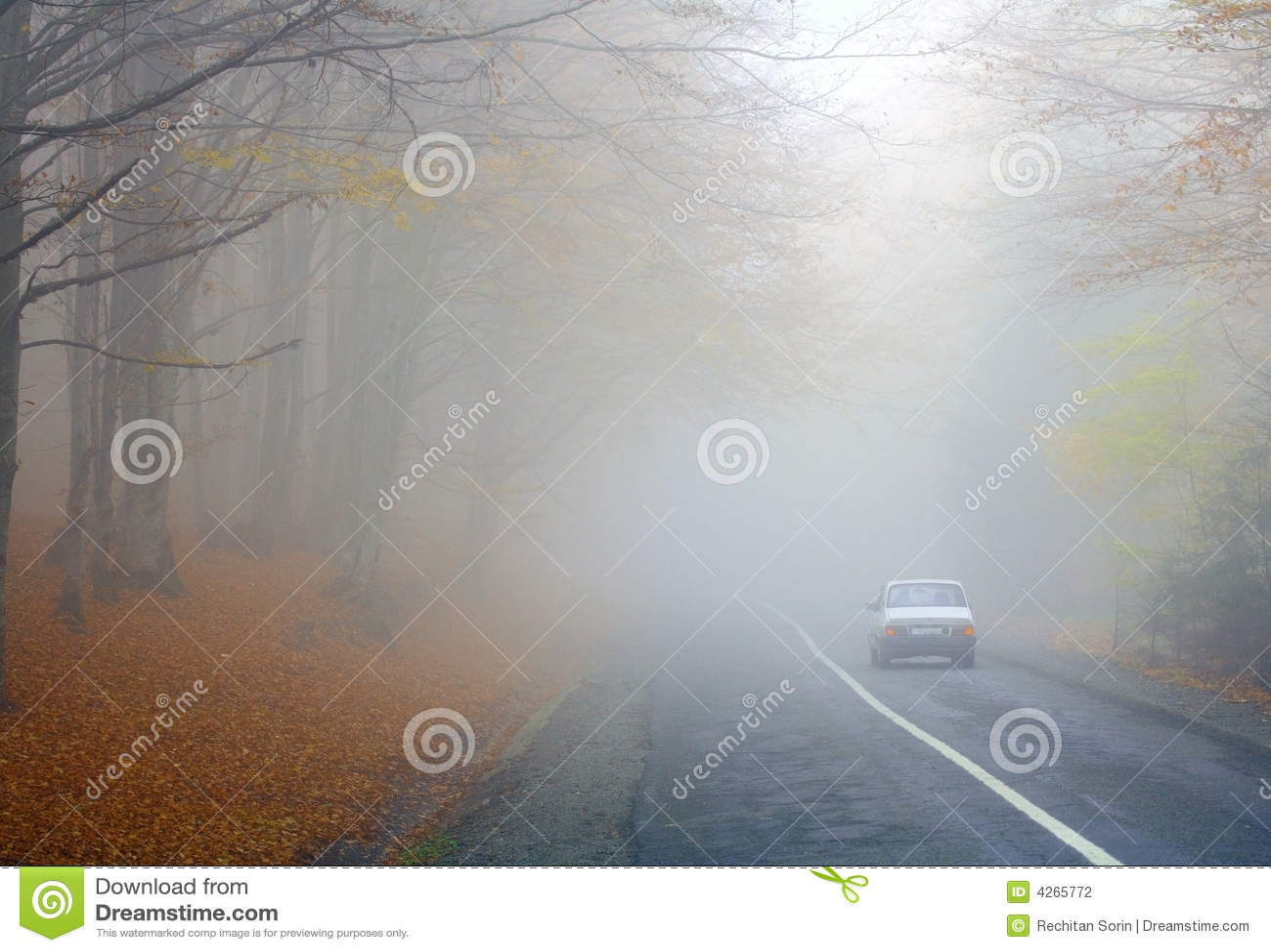 Estrada nevoenta