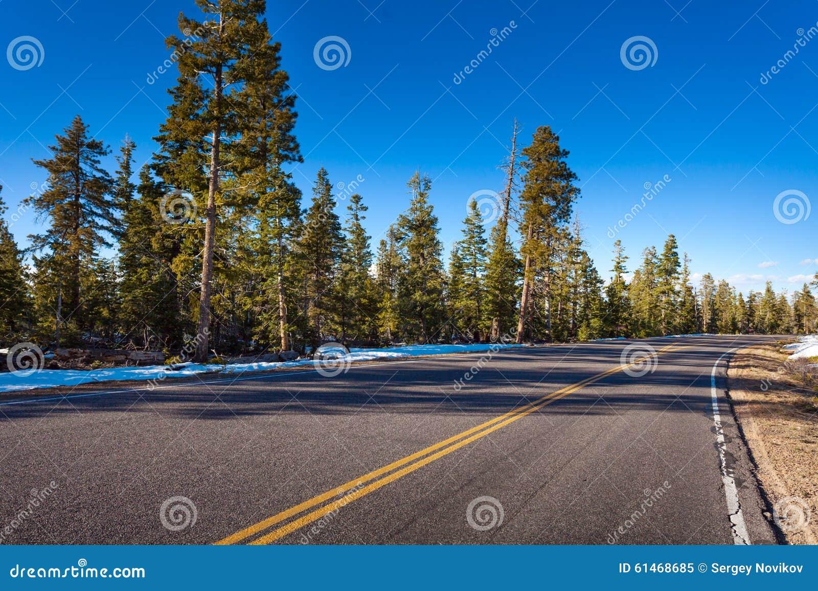 Estrada no parque nacional da garganta de Bruce no inverno