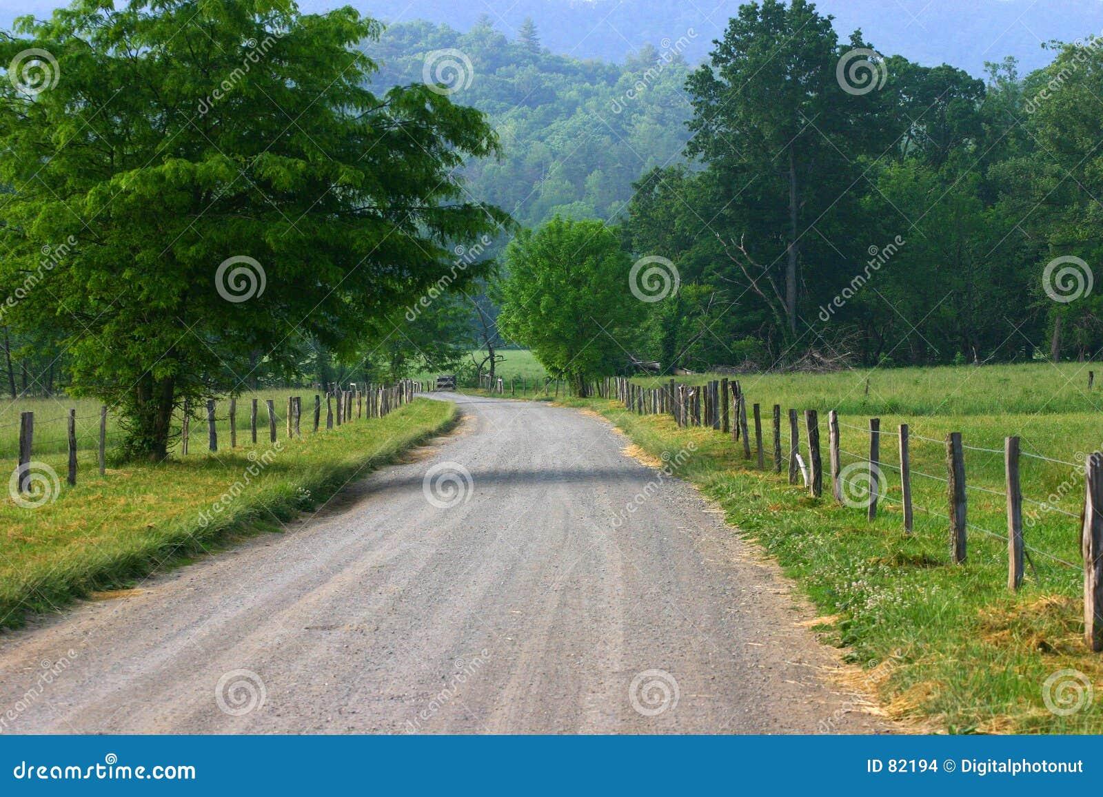 Estrada secundária