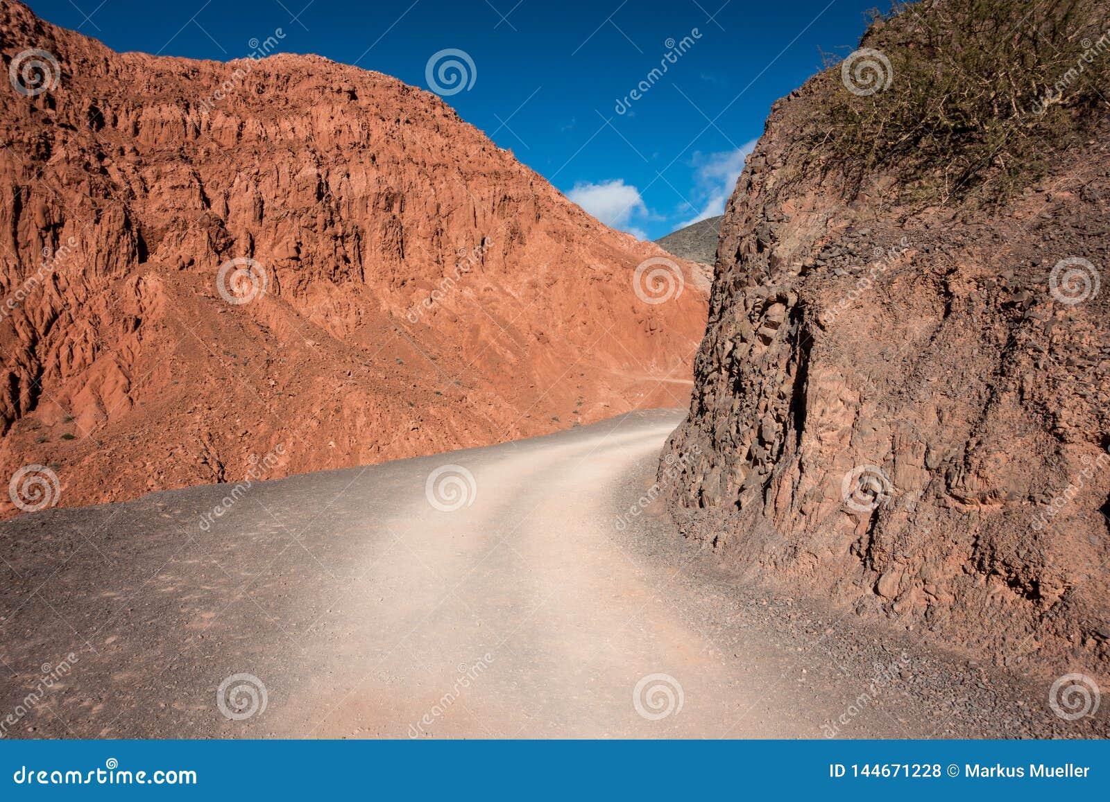 Estrada selvagem do deserto em Argentina