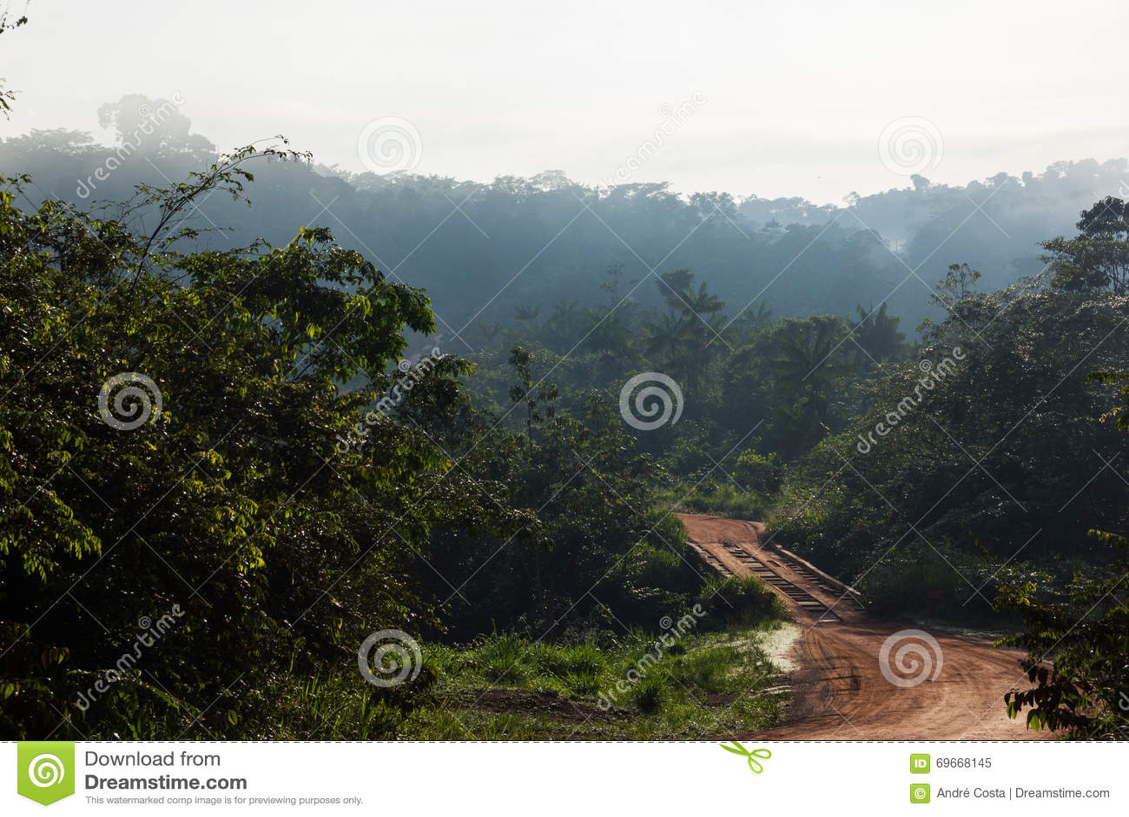 Estrada Transporte-do Amazonas em Brasil