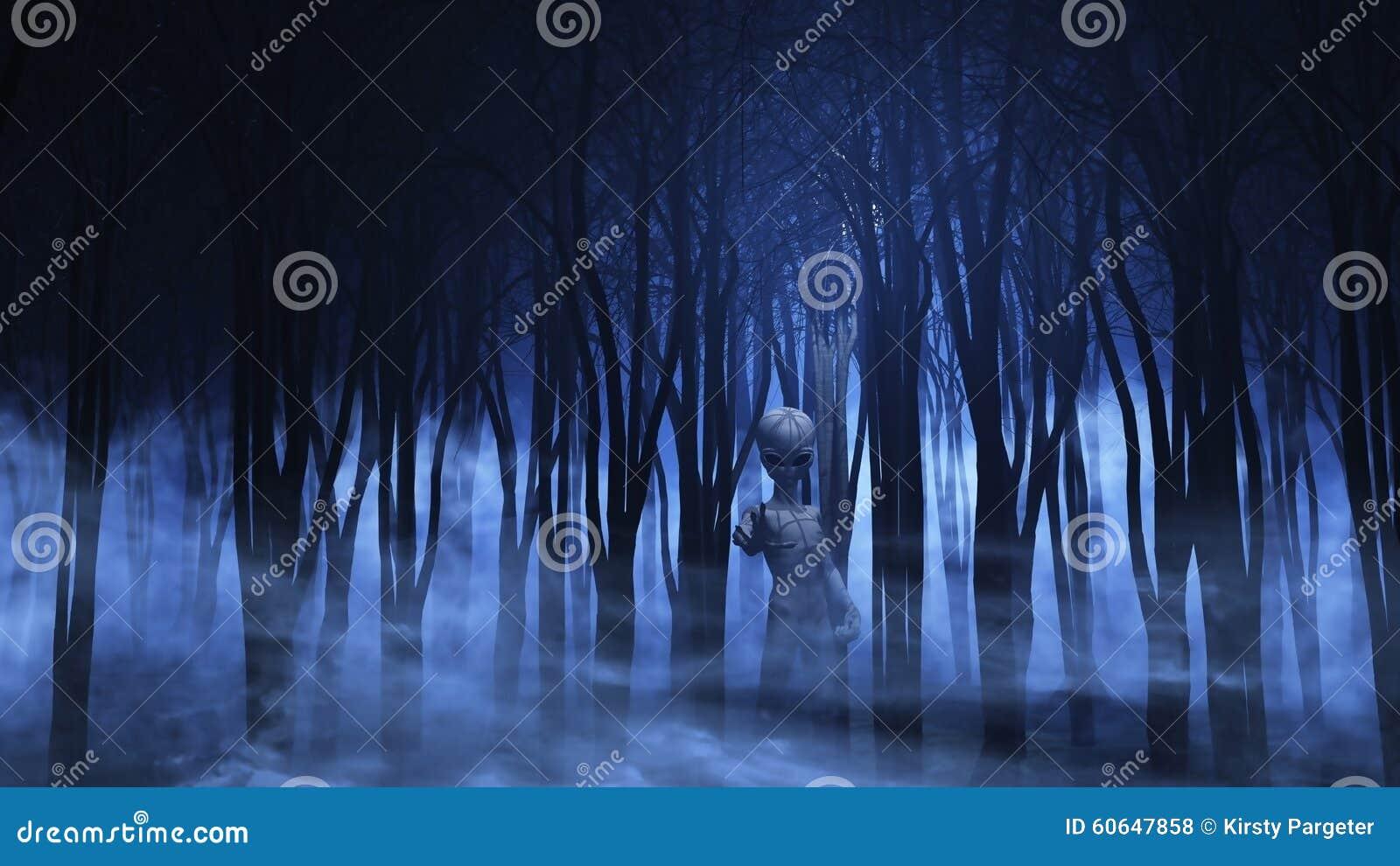 Estrangeiro 3D em uma floresta nevoenta