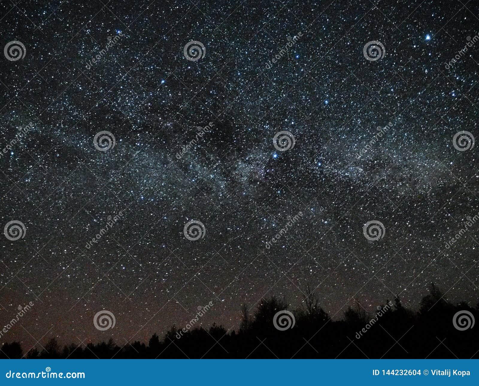 Estrelas do céu noturno e da Via Látea, constelação do Cygnus e do Lyra sobre a floresta