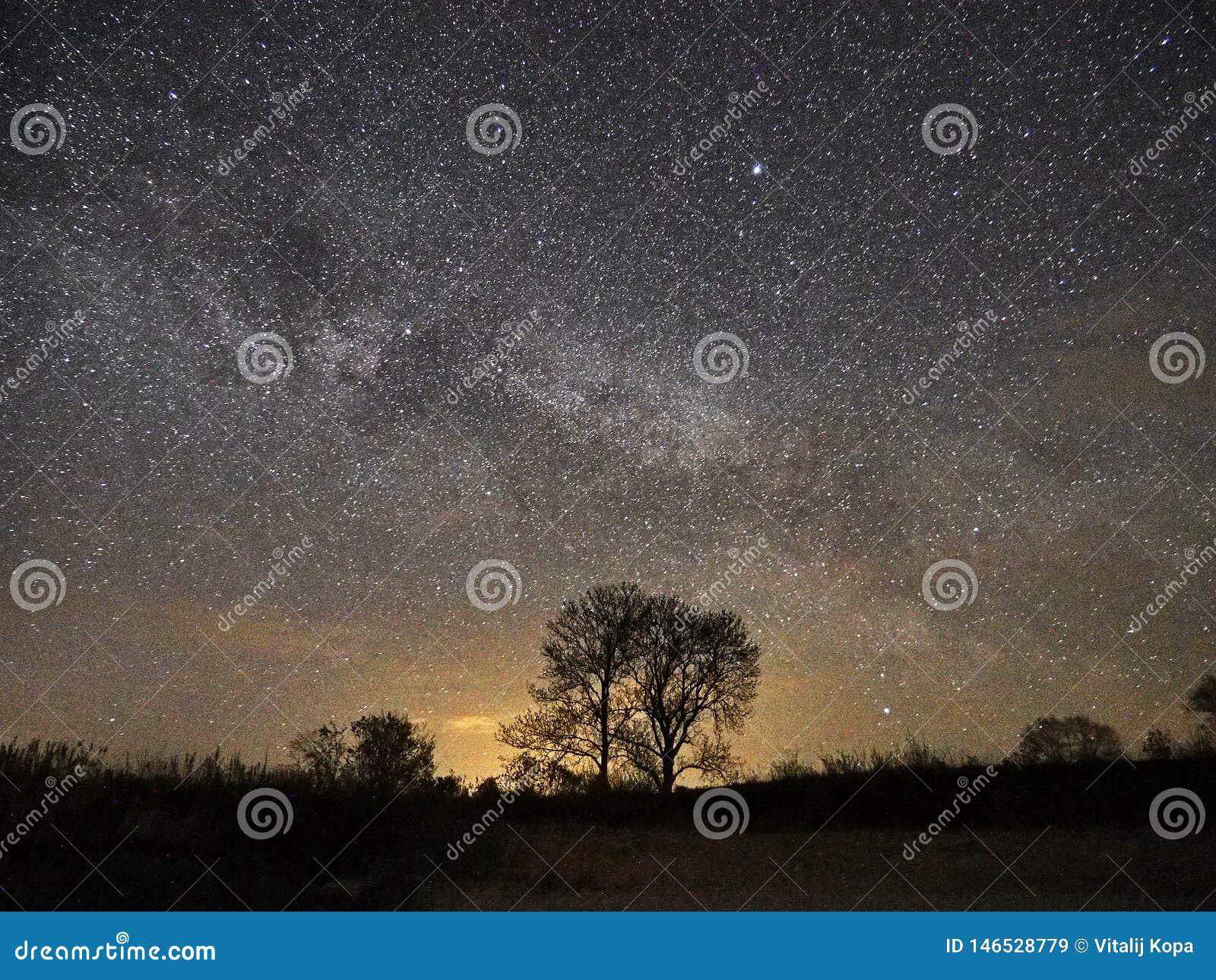 Estrelas e Via L?tea do c?u noturno observando, constela??o de Lyra