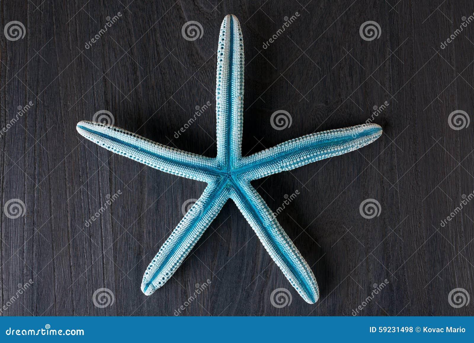 Estrellas de mar azules