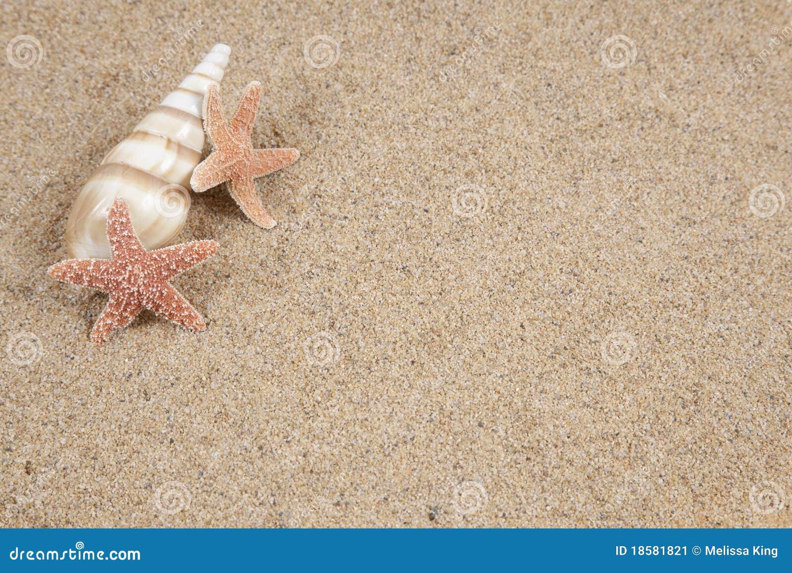 Estrellas de mar en la arena de la playa copia imagen de for Arena de playa precio