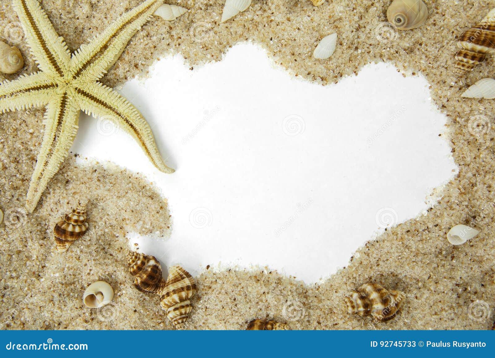 Estrellas de mar en marco de la playa de la arena