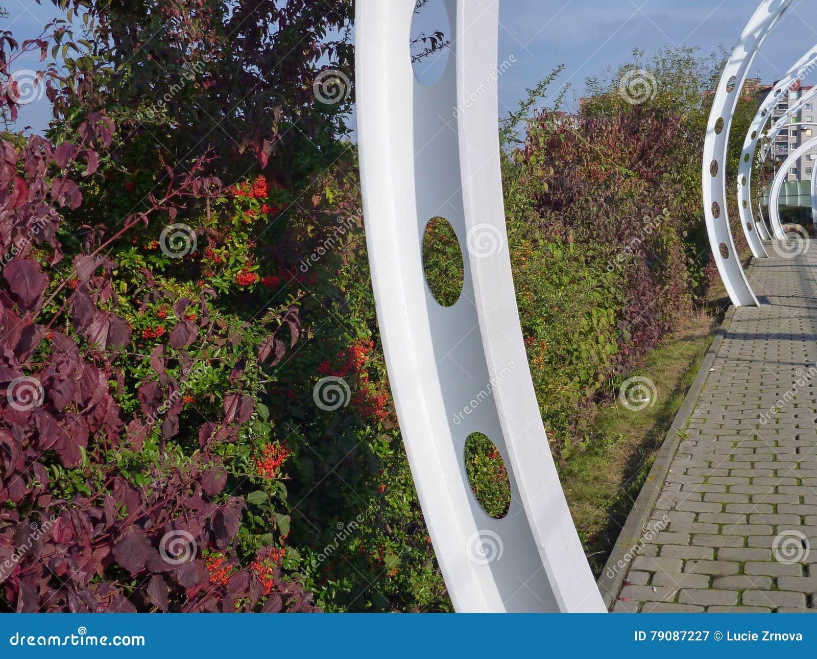Estructura blanca con los arbustos coloridos del otoño