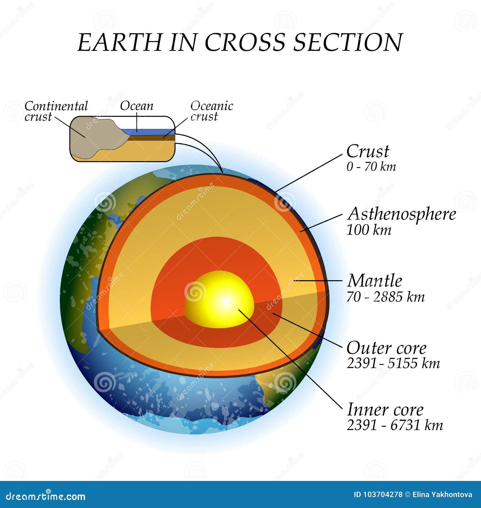 A estrutura da terra em um seção transversal, as camadas do núcleo, envoltório, asthenosphere Molde para a educação, vetor