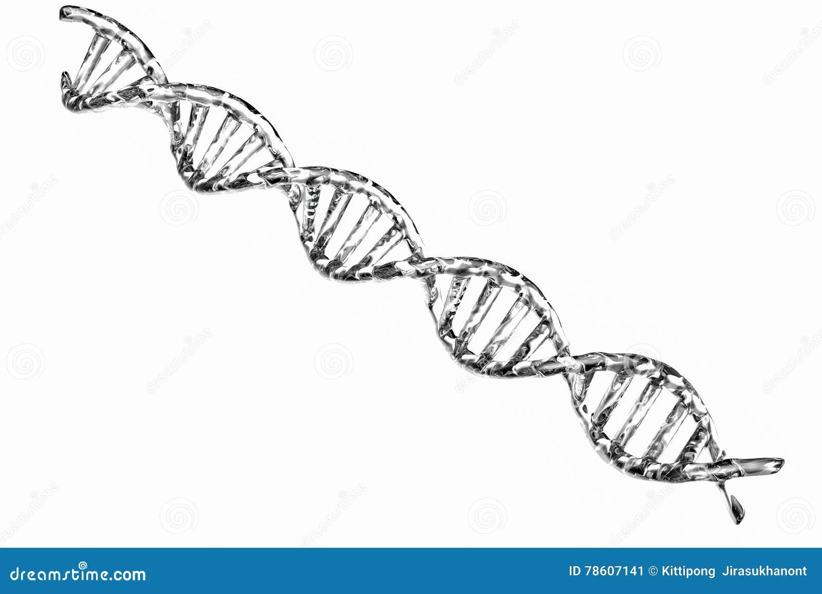 Estrutura de prata do ADN no fundo branco