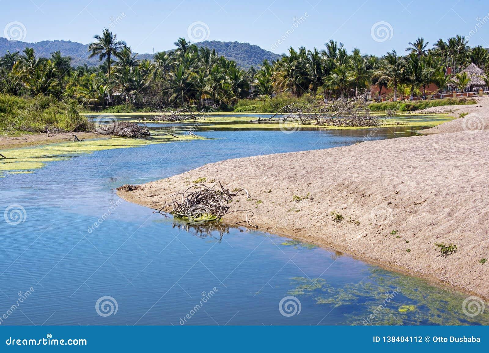 Estuaire mexicain de l océan pacifique