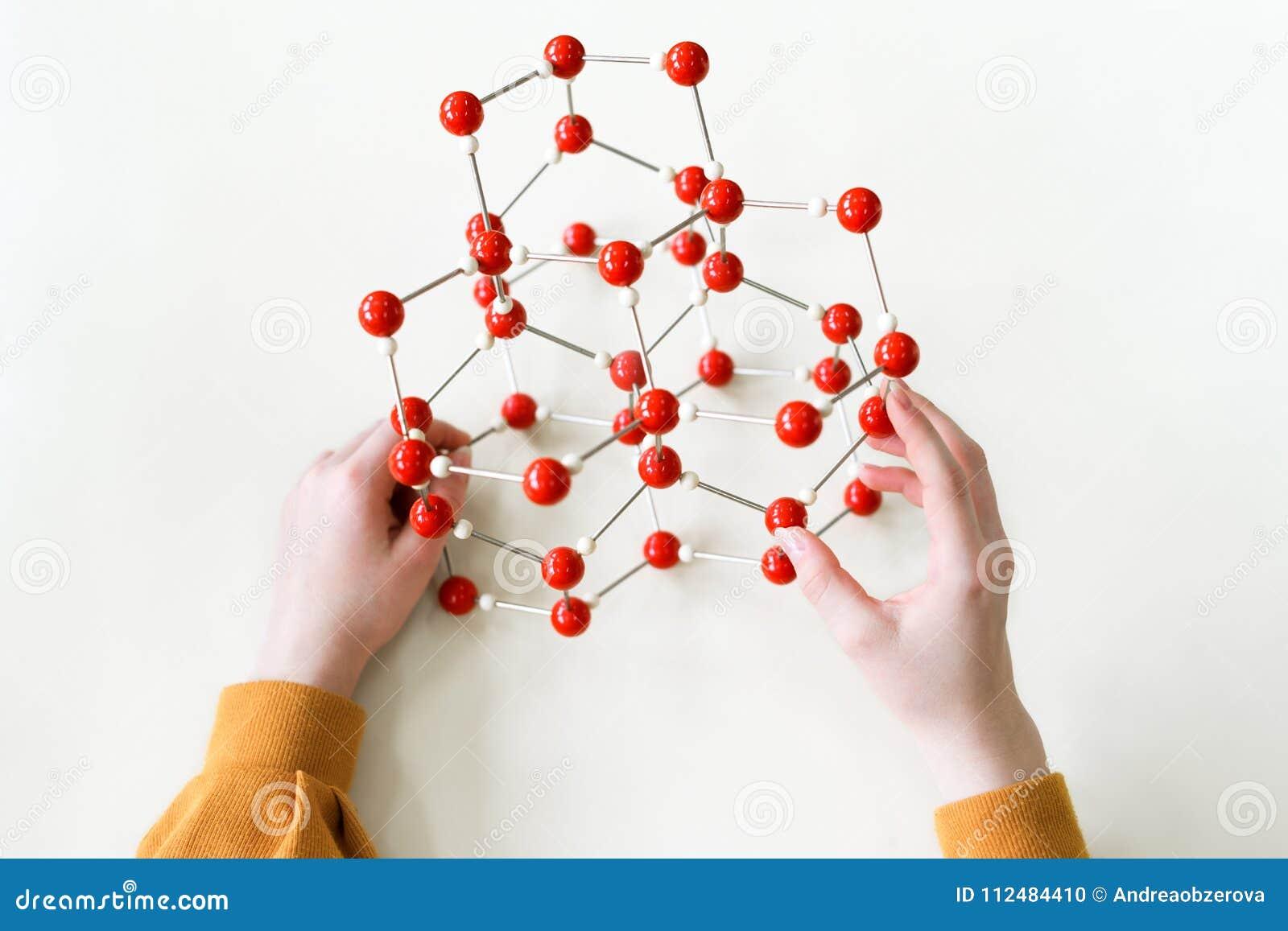 Estudiante que lleva a cabo el modelo de estructura molecular Clase de la ciencia Opinión de perspectiva personal
