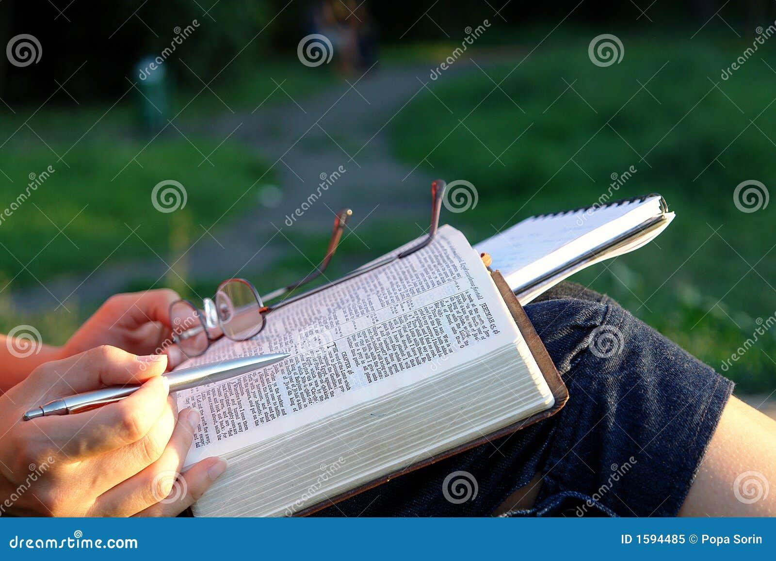 Estudio 4 de la biblia