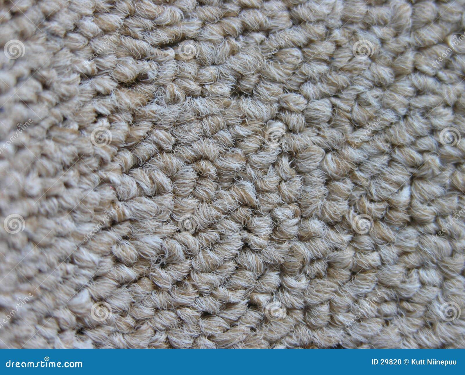 Estudio de la alfombra