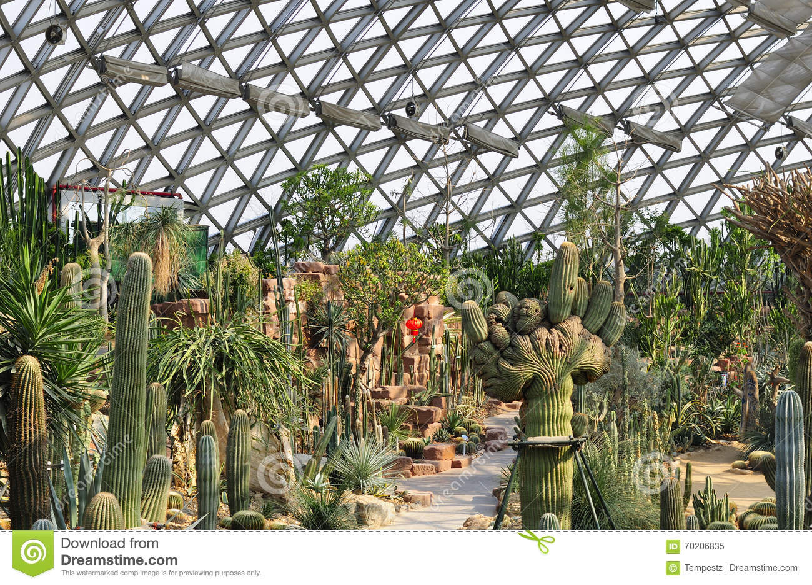 Estufa do deserto do jardim botânico de Chenshan