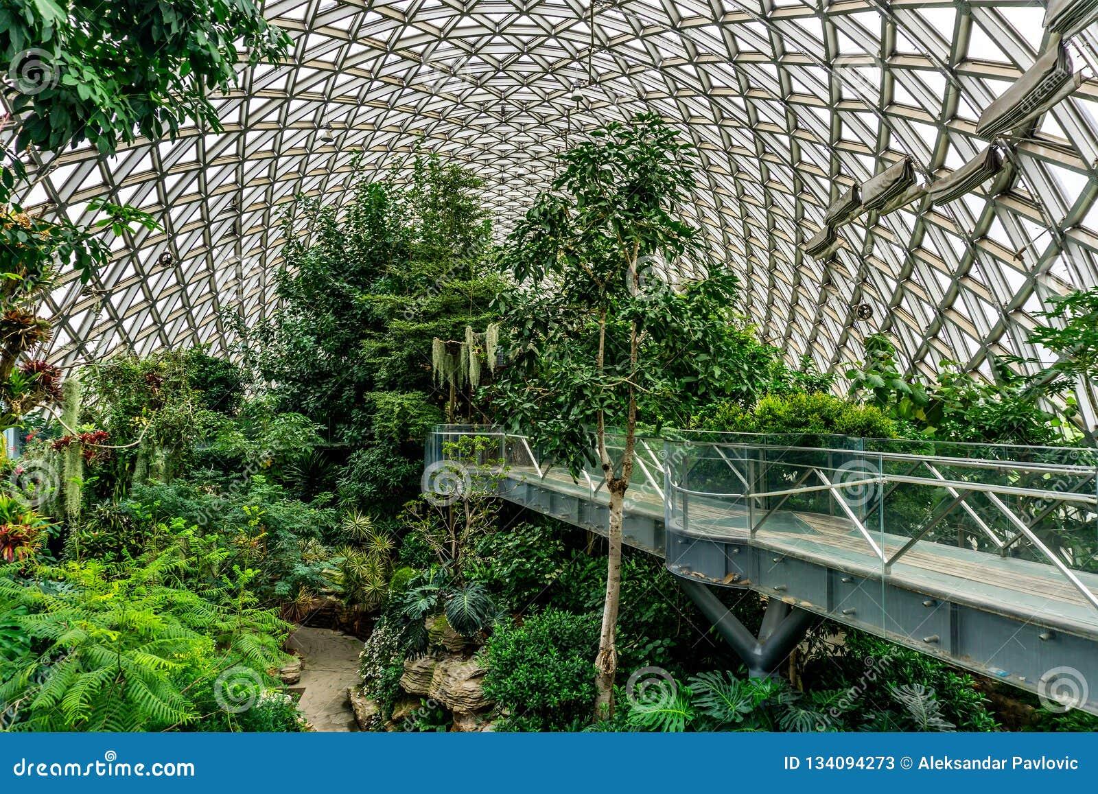 Estufa 7 do jardim botânico de China Shanghai