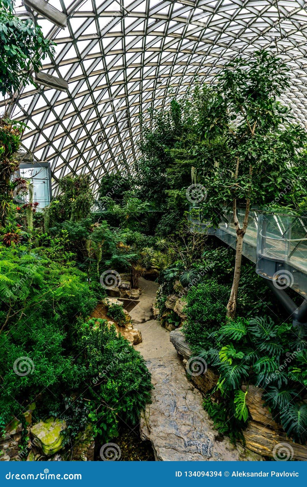 Estufa 9 do jardim botânico de China Shanghai
