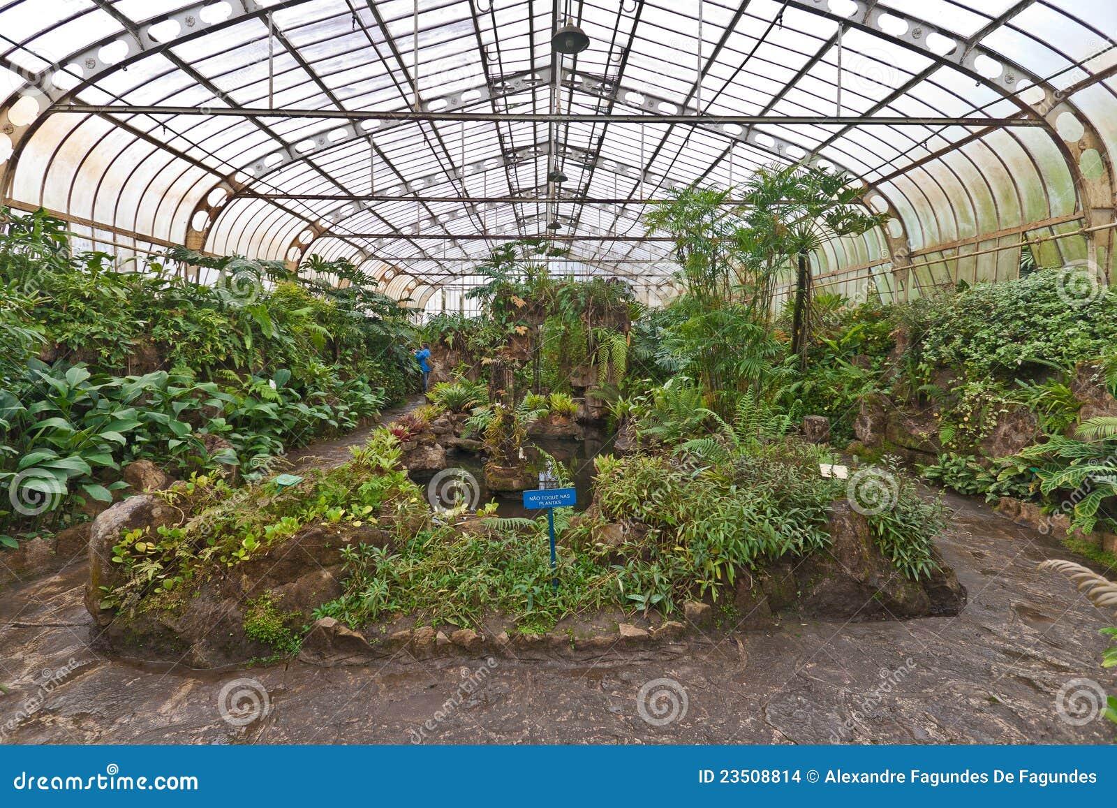 Estufa sao paulo brasil dos jardins bot nicos imagens de - Estufa de jardin ...