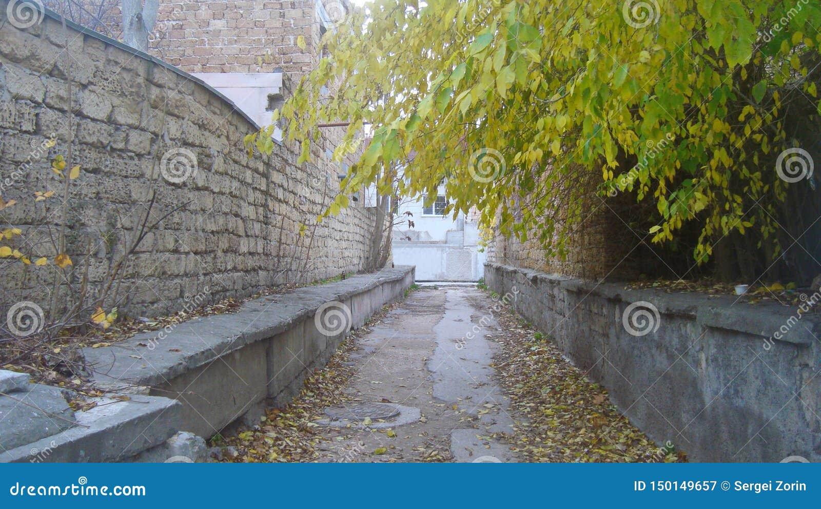 Esvazie a pista reta, estreita entre paredes de tijolo na cidade velha, em um dia nebuloso