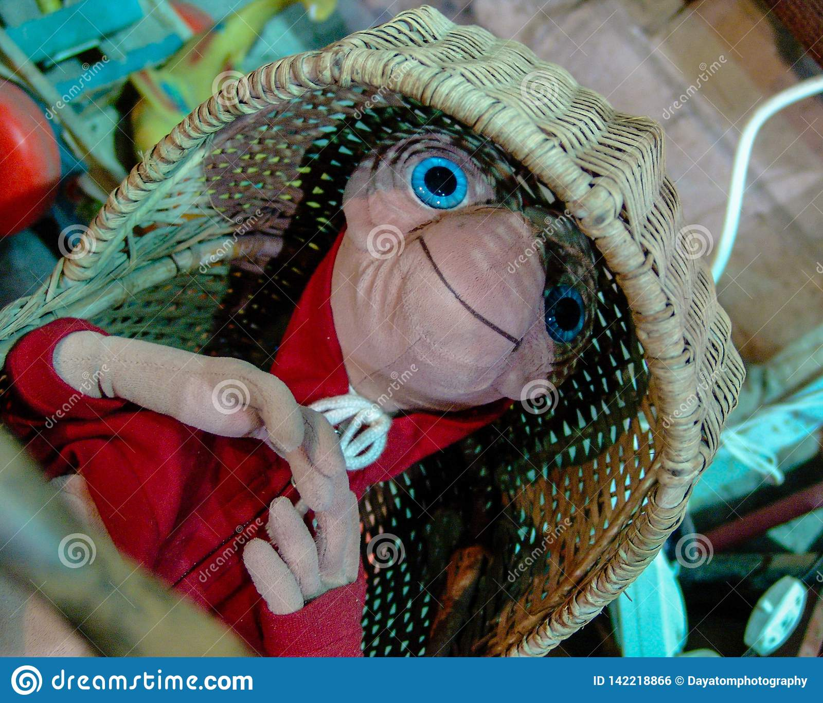 ET заполнил игрушку от фильма 80 s, кладя в шпаргалку соломы