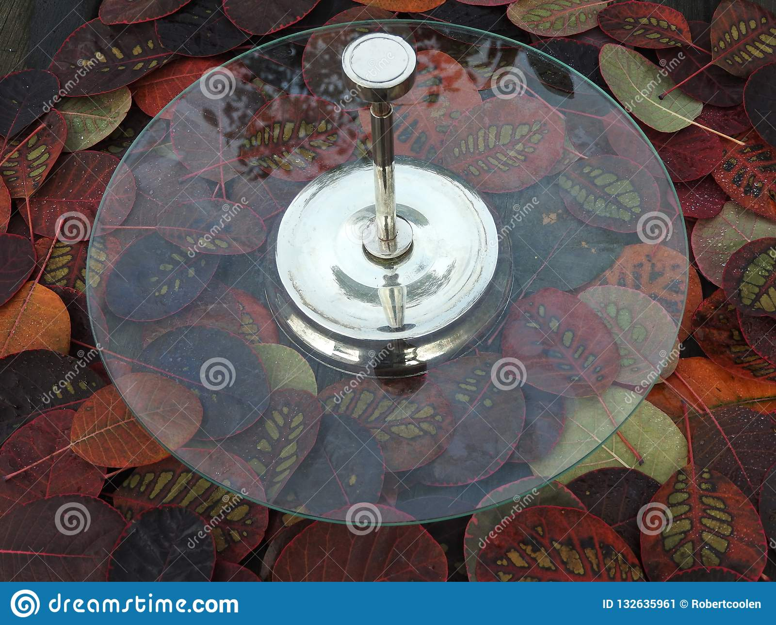 Etagere, affichage, plat, étagères présentant la nourriture dans une atmosphère spéciale d automne Argent d Etagere
