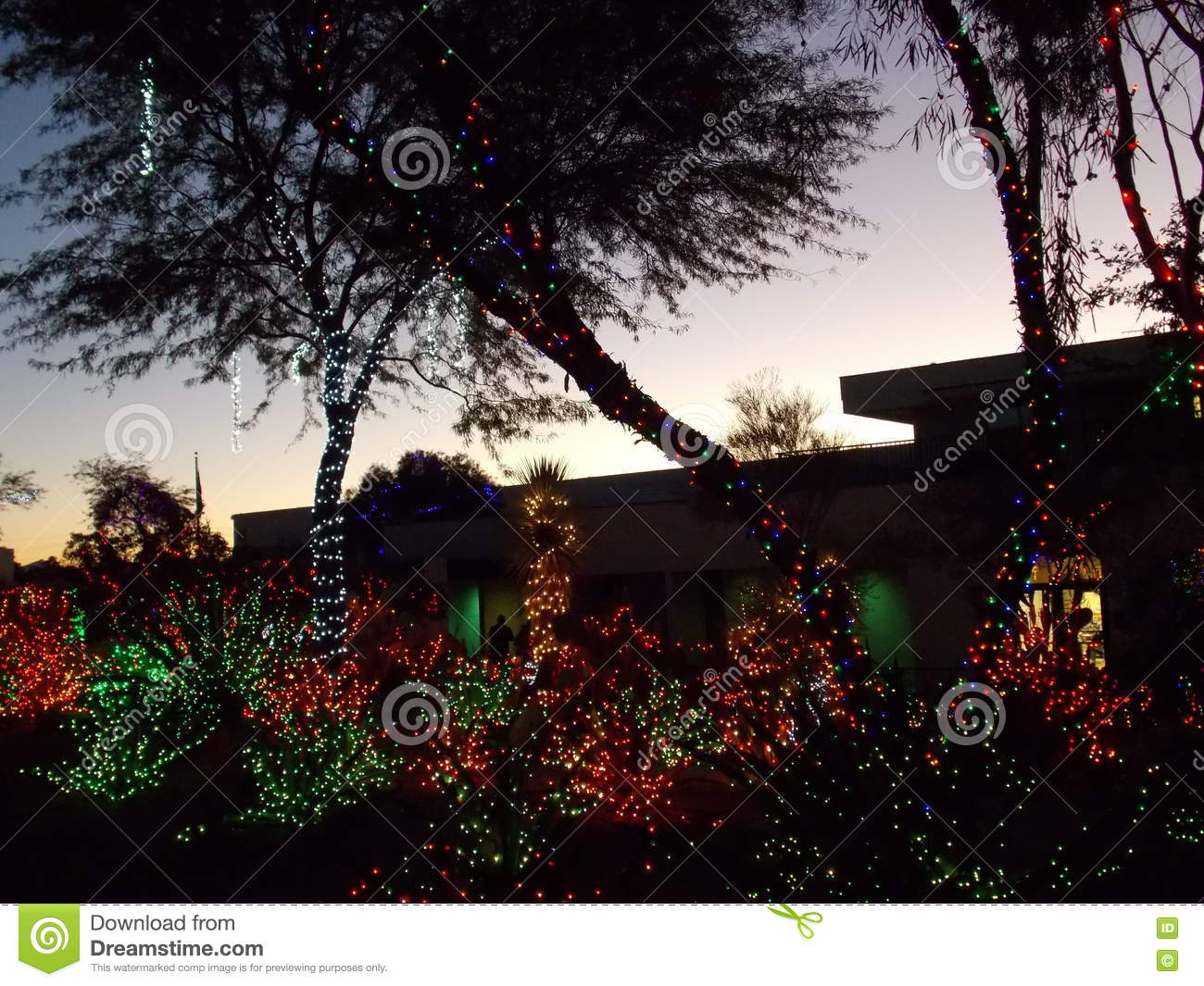 Ethel M Chocolate Factory Cactus Garden Decorated For Christmas ...