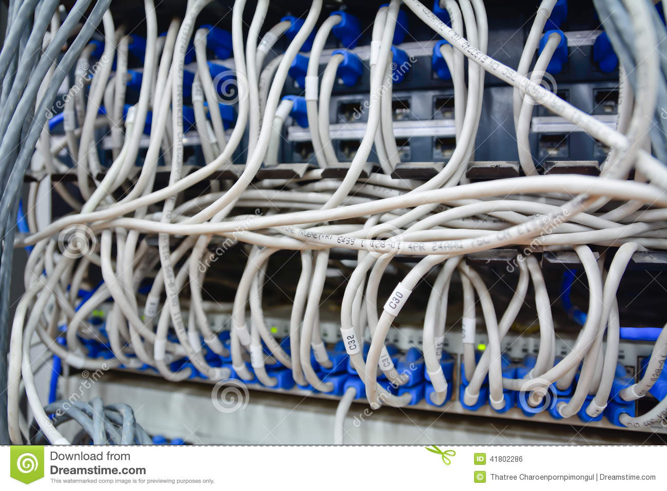 Ethernet Cables Connected To Computer Internet Server Stock Photo ...