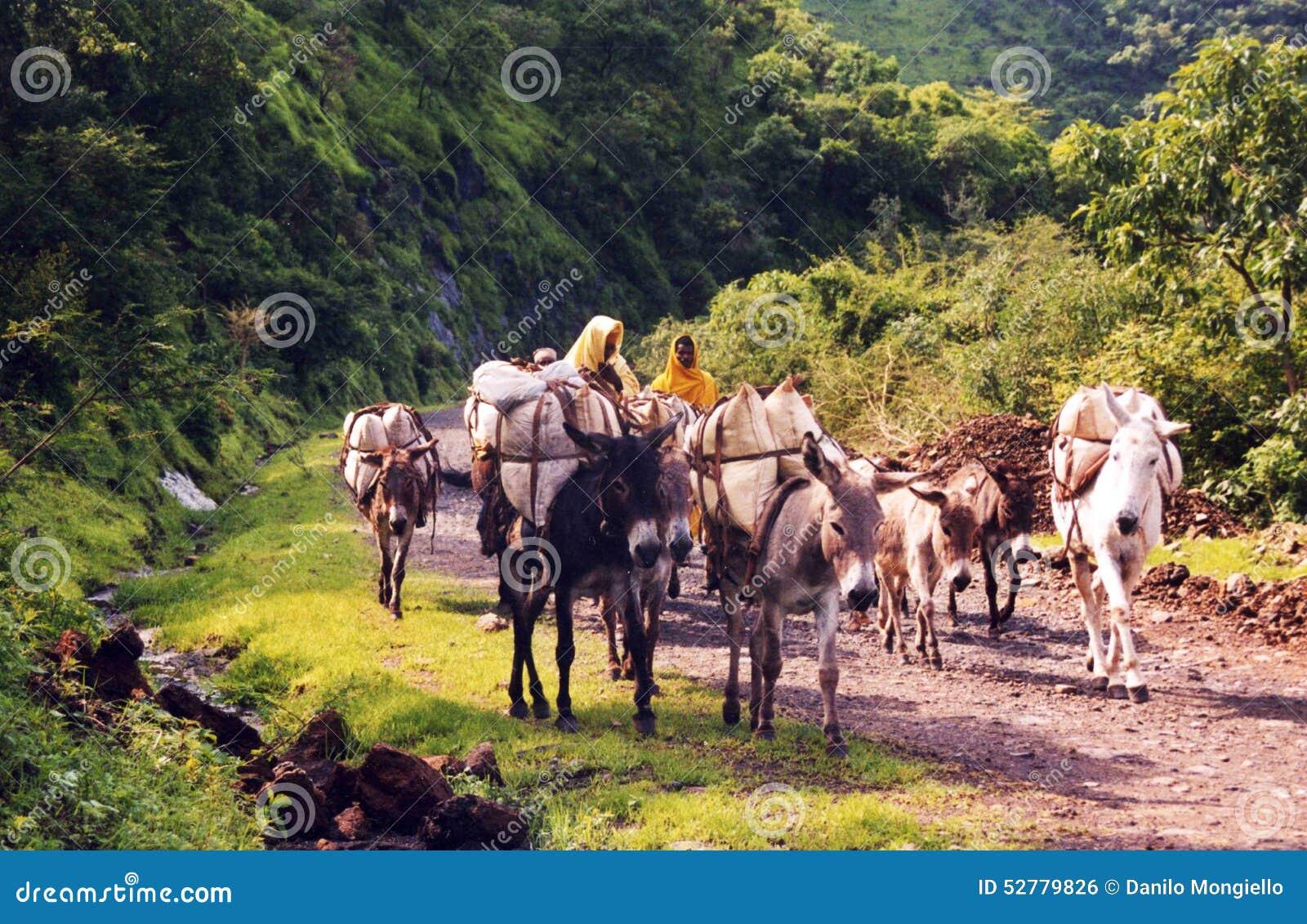 Ethiopische caravan
