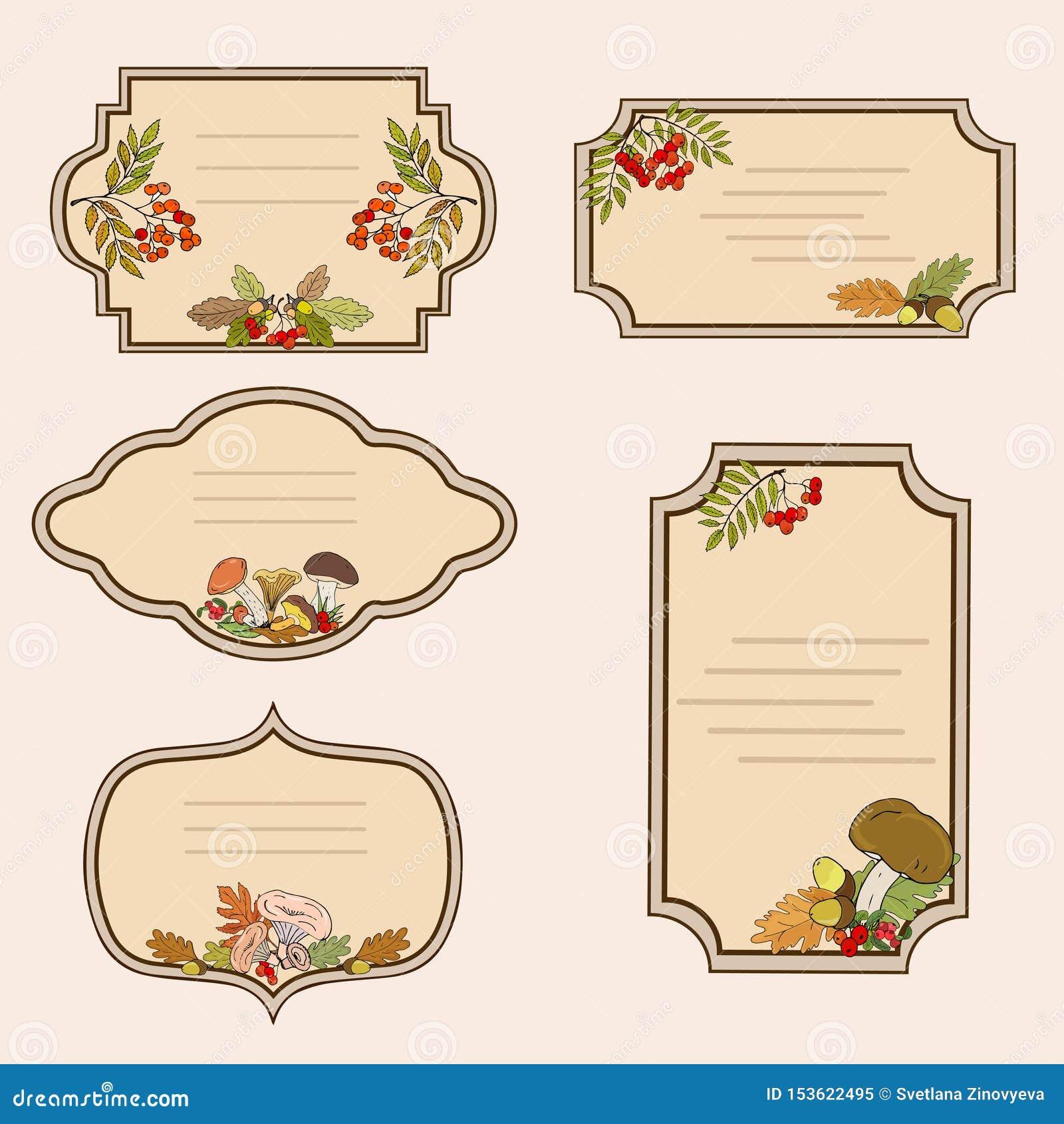 Etiketten met het beeld van bospaddestoelen, de herfstbladeren en lijsterbessenbessen Vector