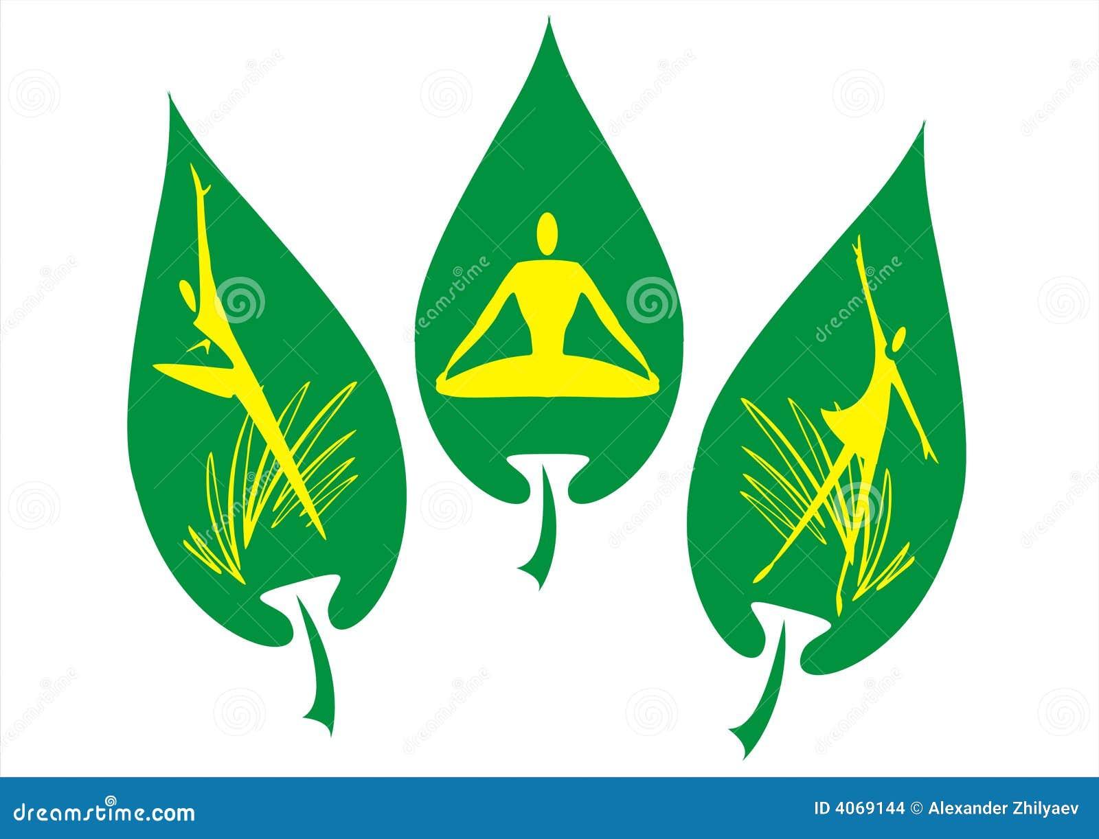 Etiqueta verde