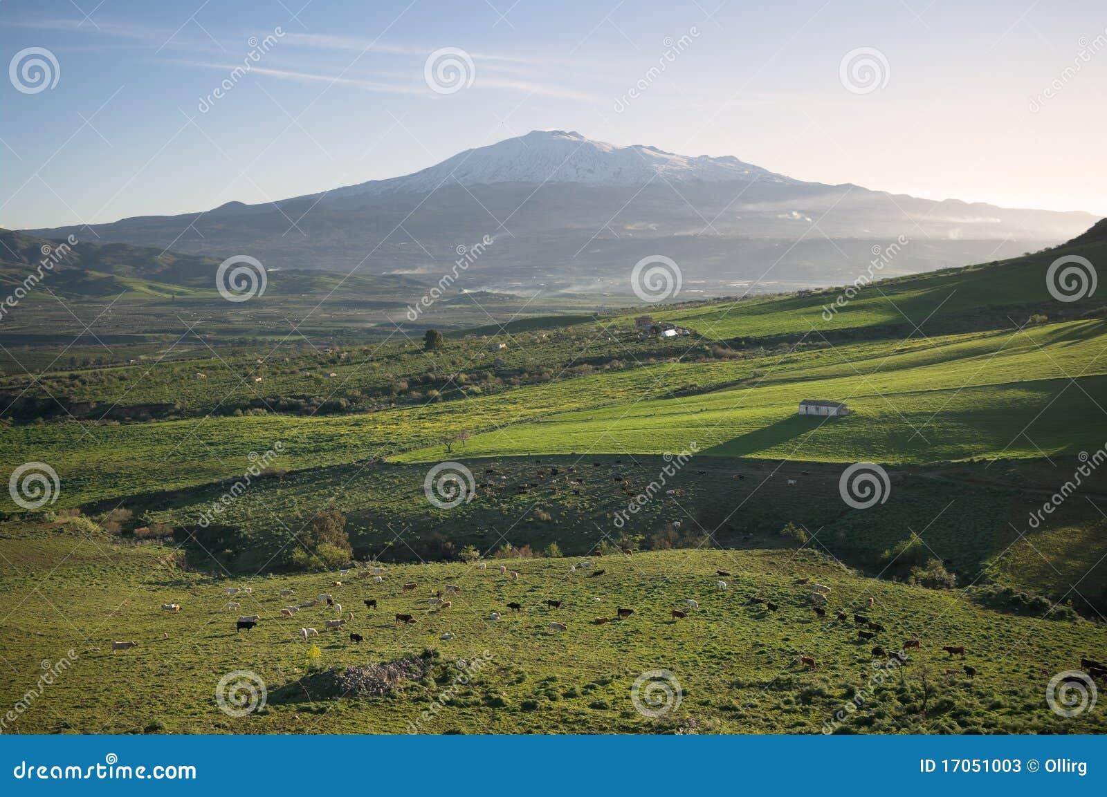 Etna αγροτικό ηφαίστειο τοπί&om