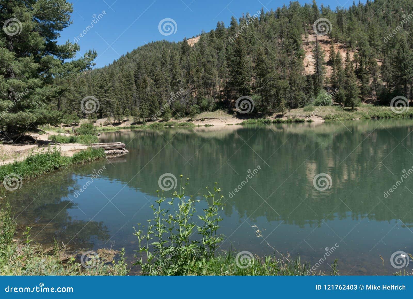 Ett av flera damm på Fawn Lakes i nordligt nytt - Mexiko