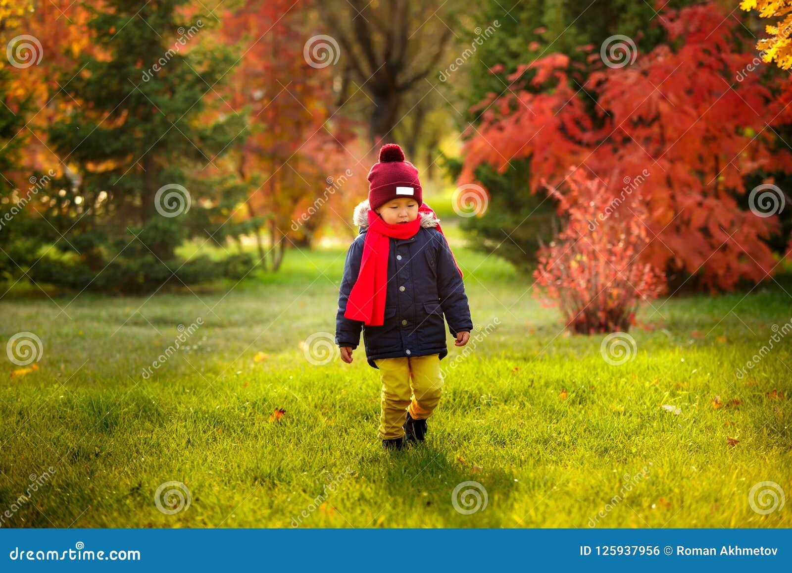Ett barn går i hösten i parkera - ett barn går i aet